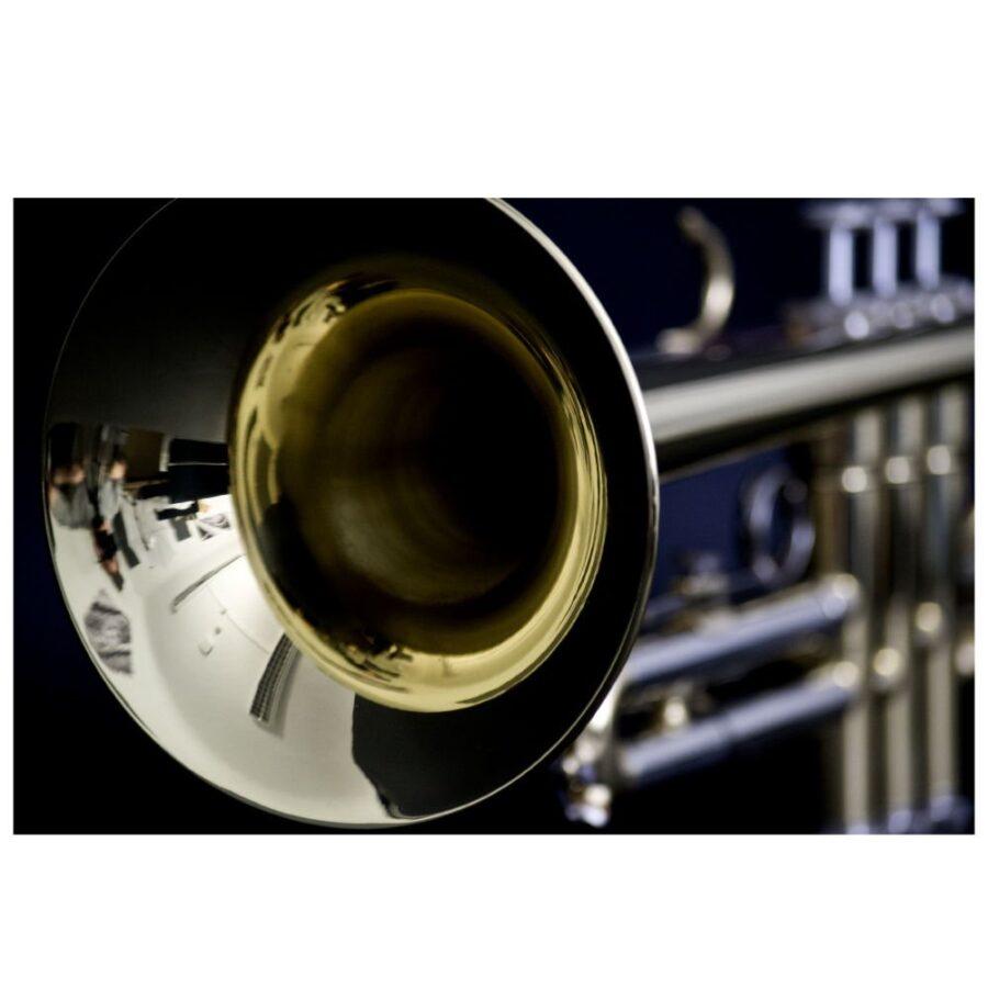 Trompeta Jhon Packer - JP051-5