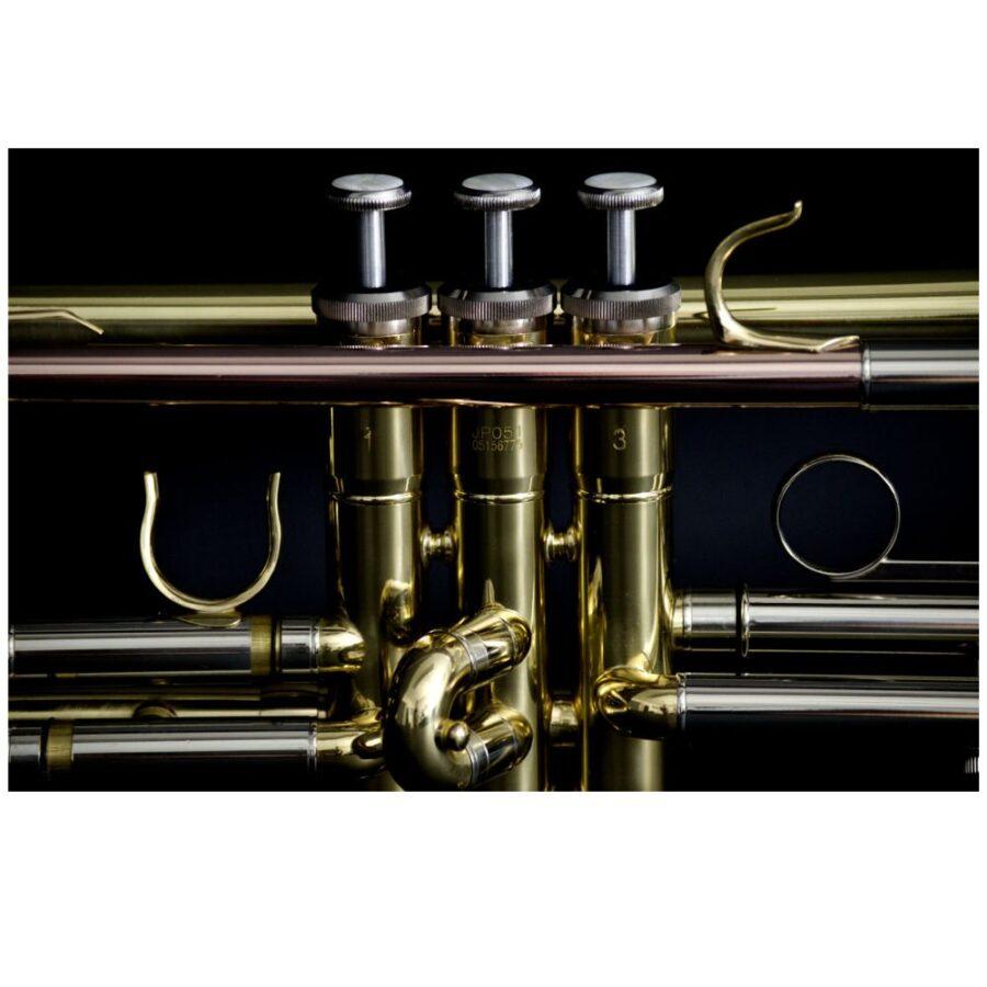 Trompeta Jhon Packer - JP051-3